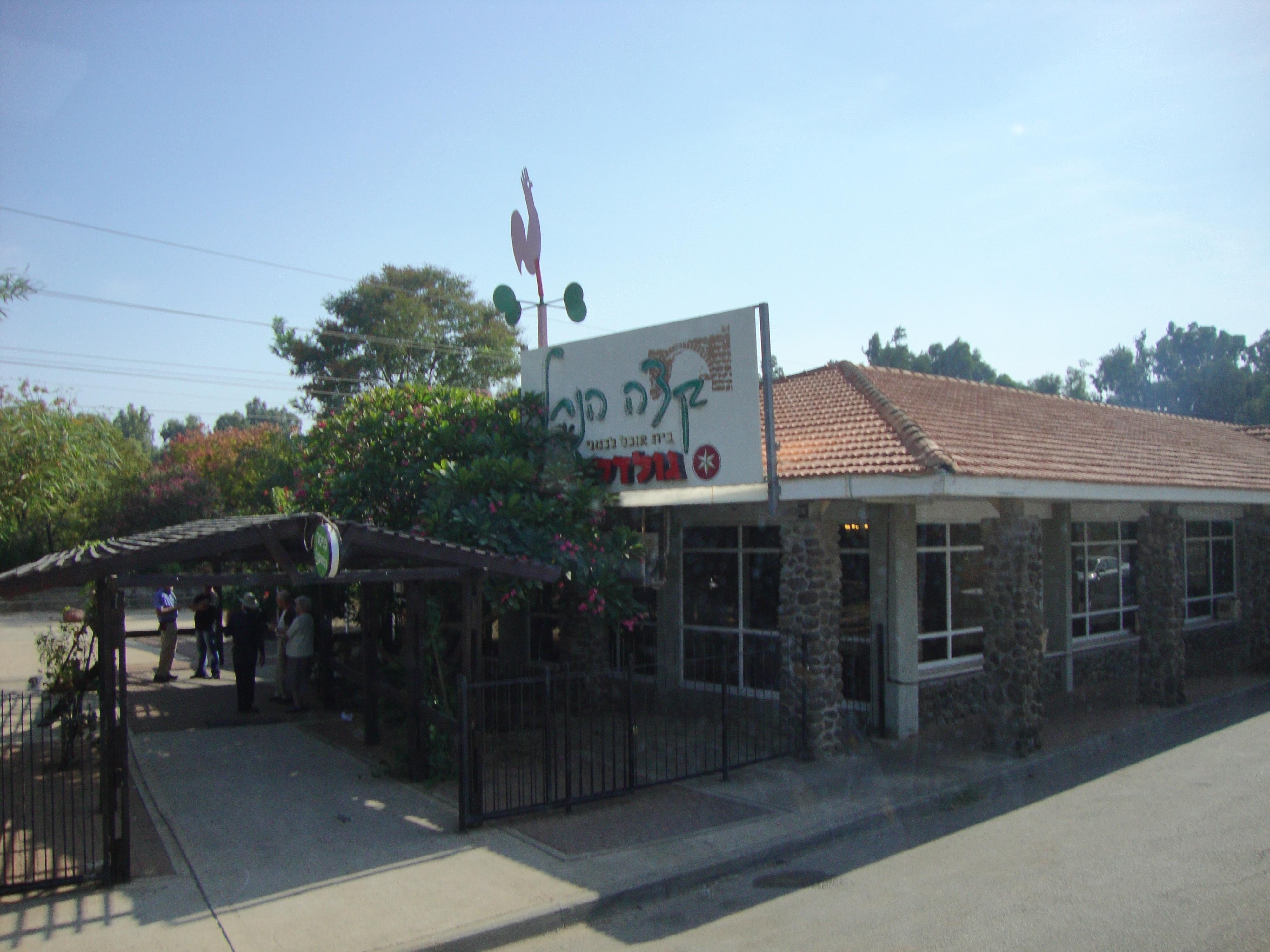 restaurant ginosaur2